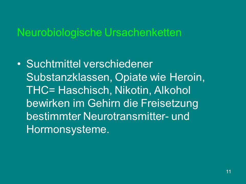 Neurobiologische Ursachenketten