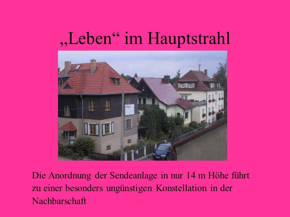 """Leben im Hauptstrahl"