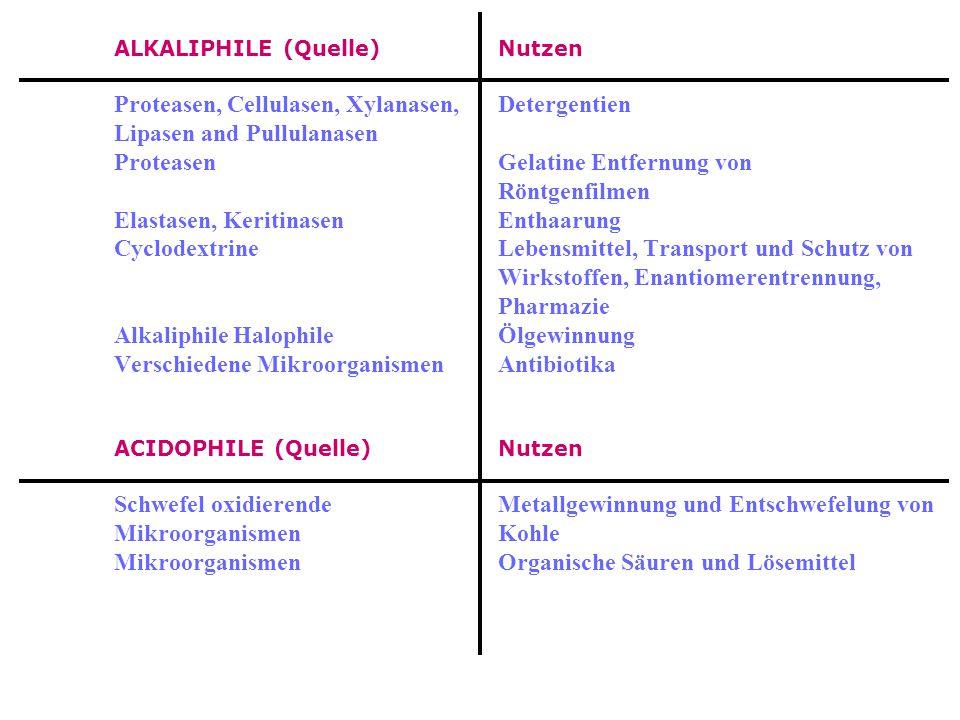 Proteasen, Cellulasen, Xylanasen, Detergentien