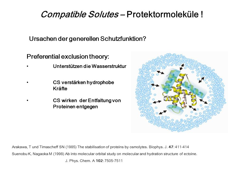 Compatible Solutes – Protektormoleküle !