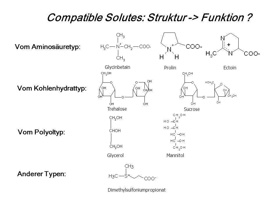 Compatible Solutes: Struktur -> Funktion