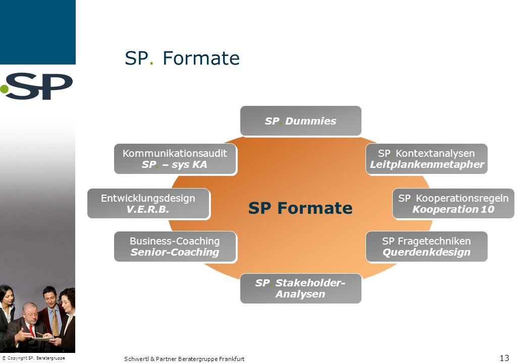 SP. Stakeholder- Analysen