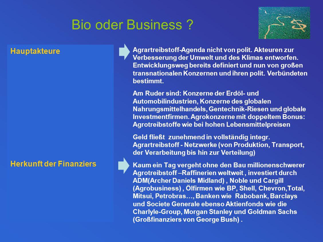 Bio oder Business Hauptakteure Herkunft der Finanziers