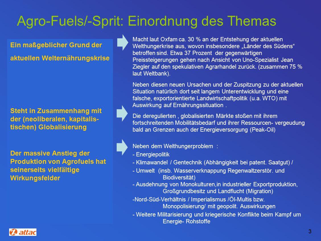 Agro-Fuels/-Sprit: Einordnung des Themas