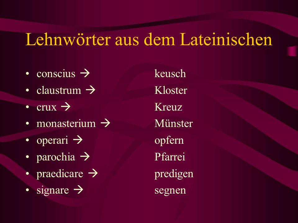 Lehnwörter aus dem Lateinischen