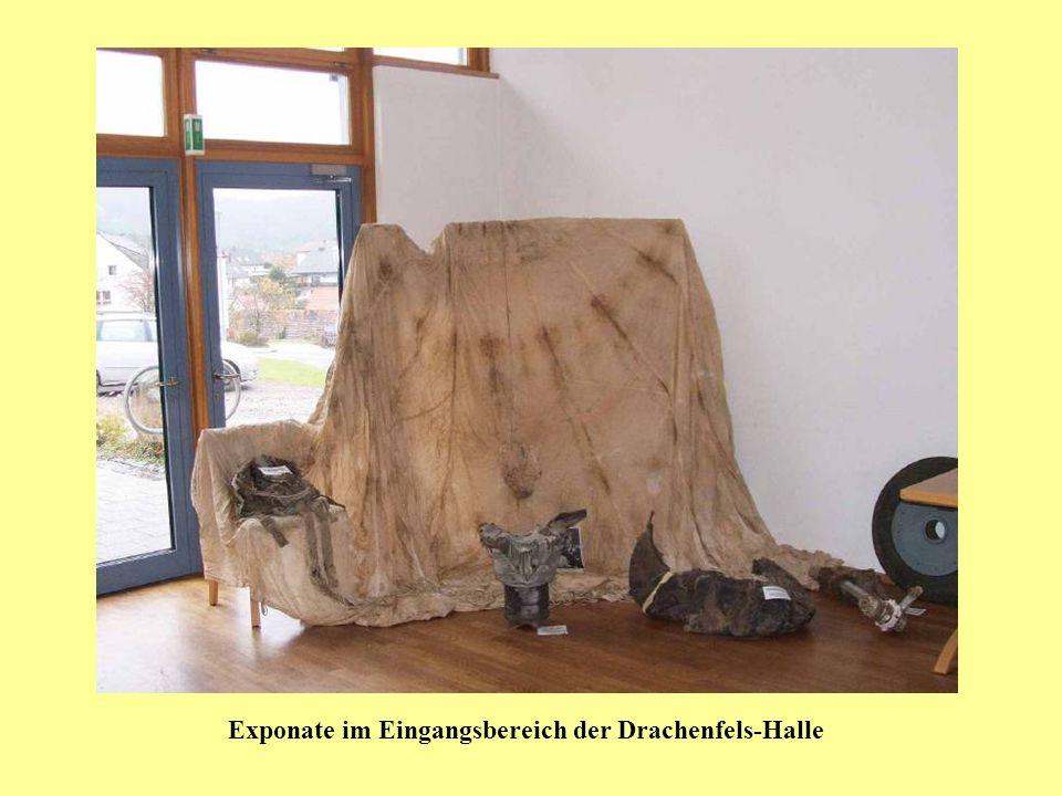 Exponate im Eingangsbereich der Drachenfels-Halle