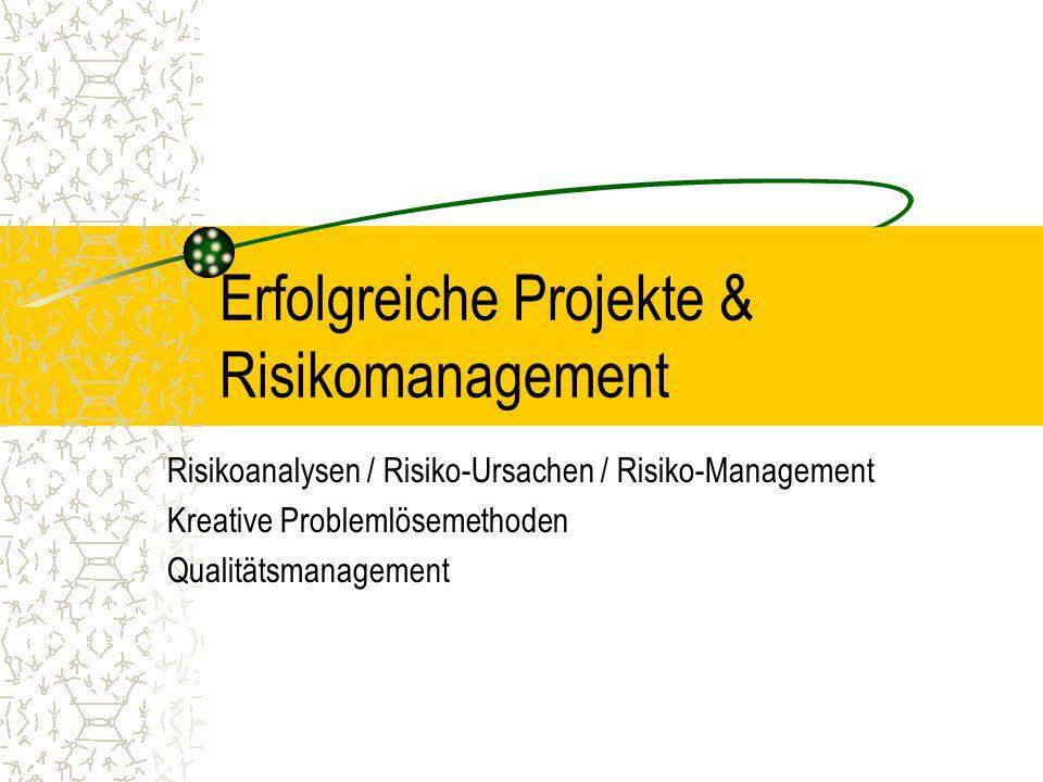 Erfolgreiche Projekte & Risikomanagement