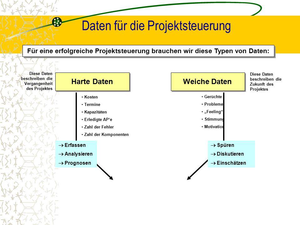 Daten für die Projektsteuerung