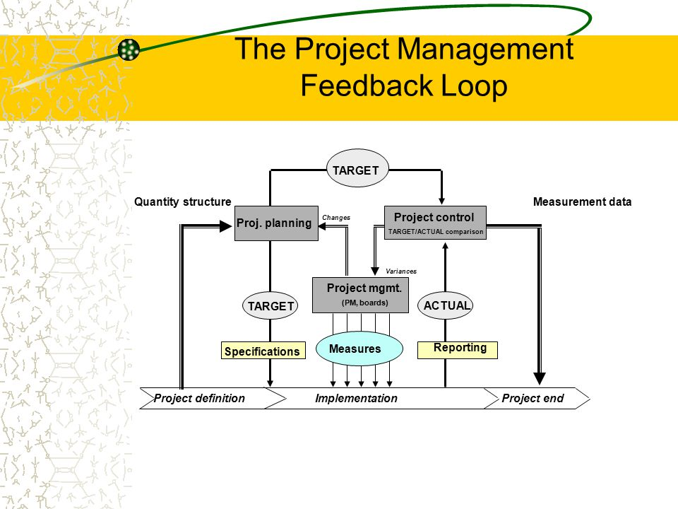The Project Management Feedback Loop