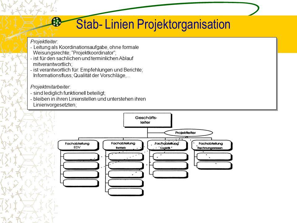 Stab- Linien Projektorganisation