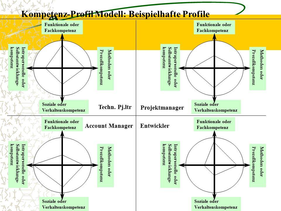 Kompetenz-Profil Modell: Beispielhafte Profile