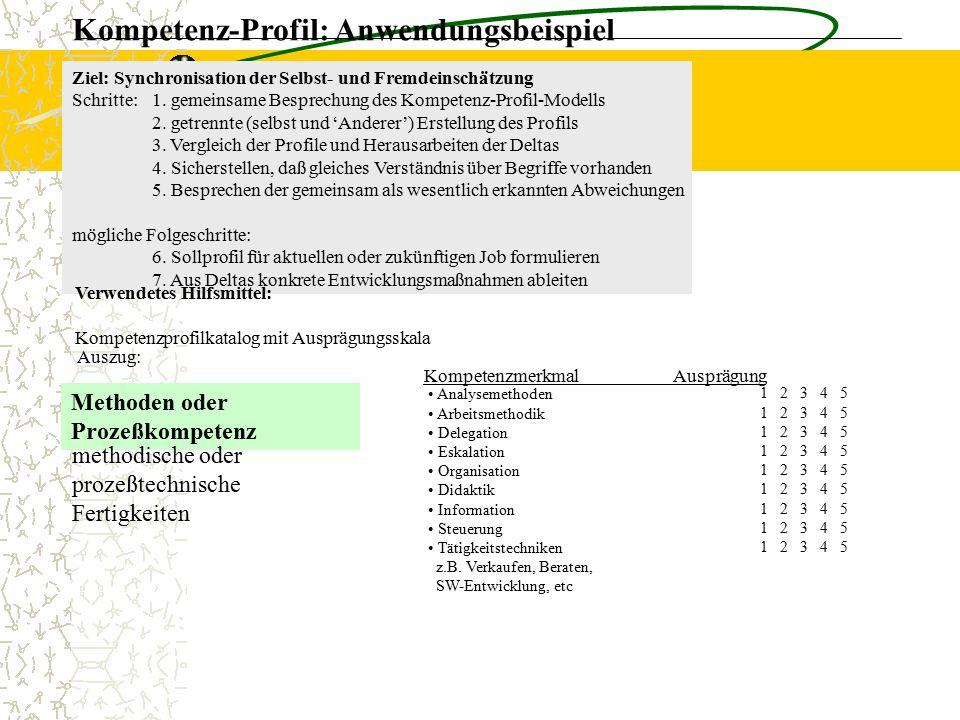 Kompetenz-Profil: Anwendungsbeispiel