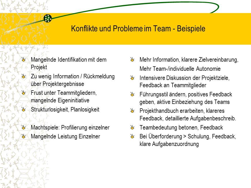 Konflikte und Probleme im Team - Beispiele