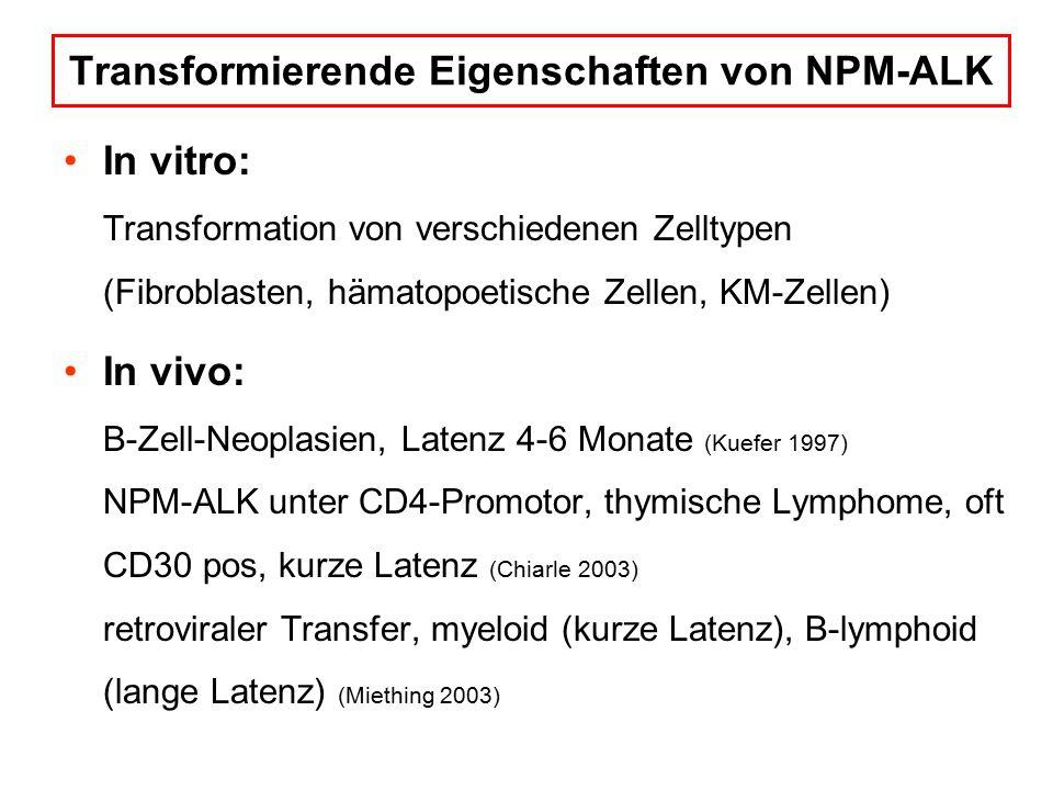 Transformierende Eigenschaften von NPM-ALK