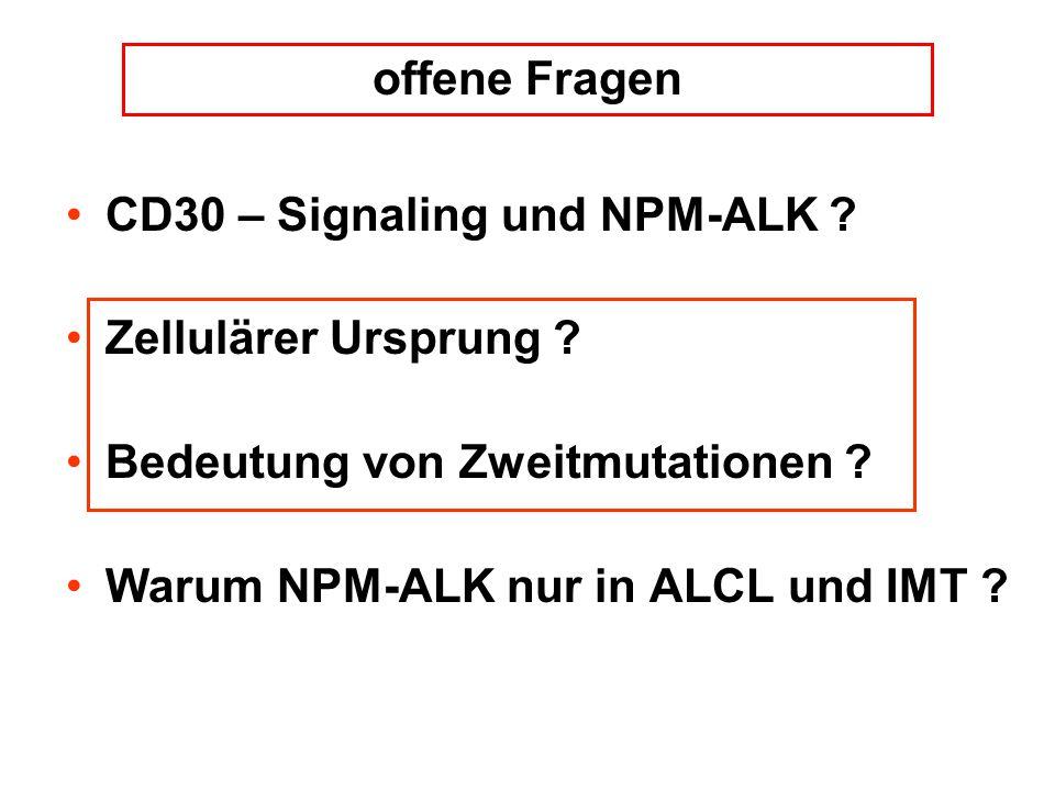 offene Fragen CD30 – Signaling und NPM-ALK Zellulärer Ursprung Bedeutung von Zweitmutationen