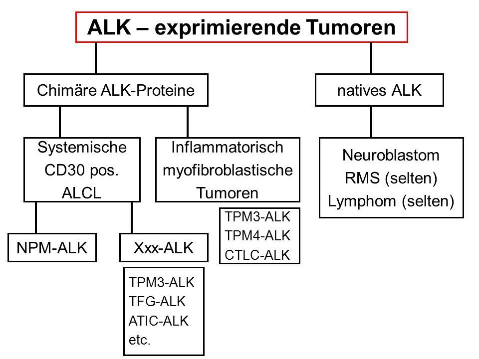 ALK – exprimierende Tumoren