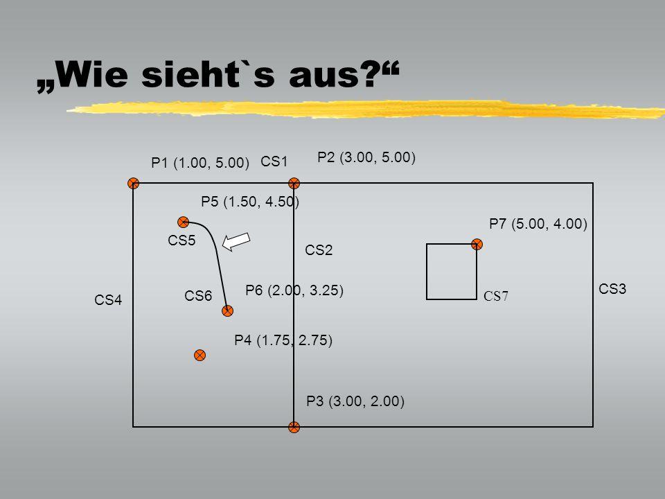 """""""Wie sieht`s aus P2 (3.00, 5.00) P1 (1.00, 5.00) CS1 P5 (1.50, 4.50)"""