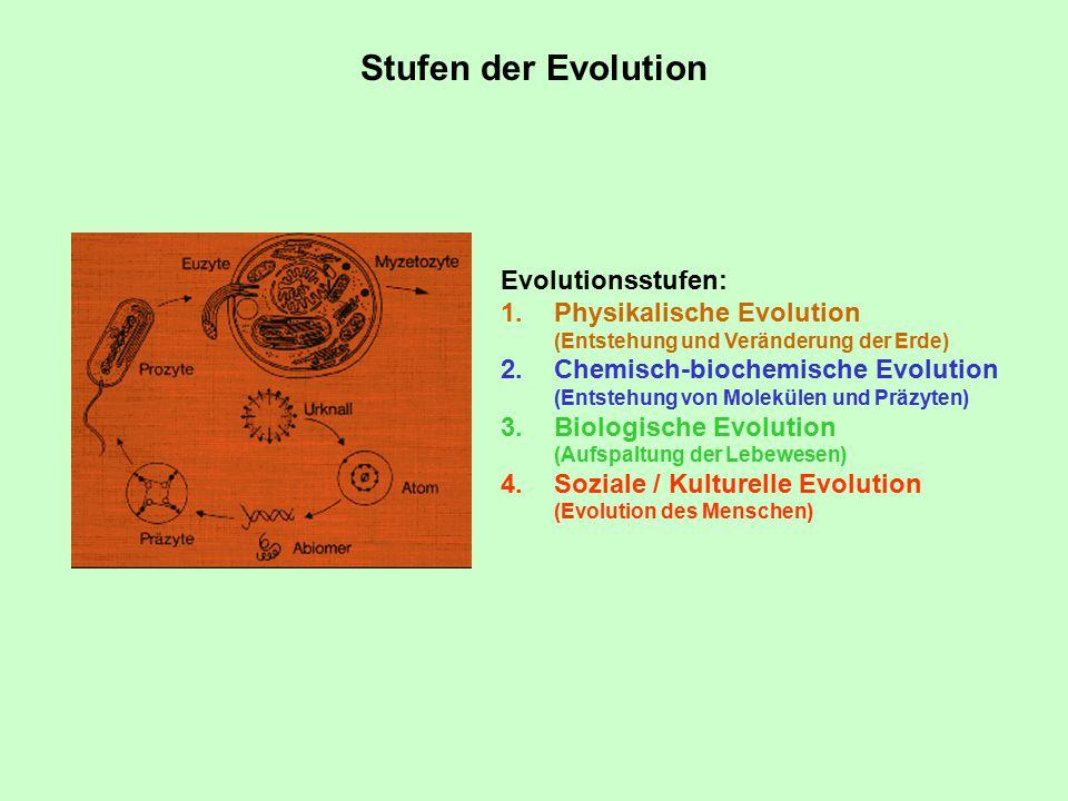 Stufen der Evolution Evolutionsstufen: Physikalische Evolution