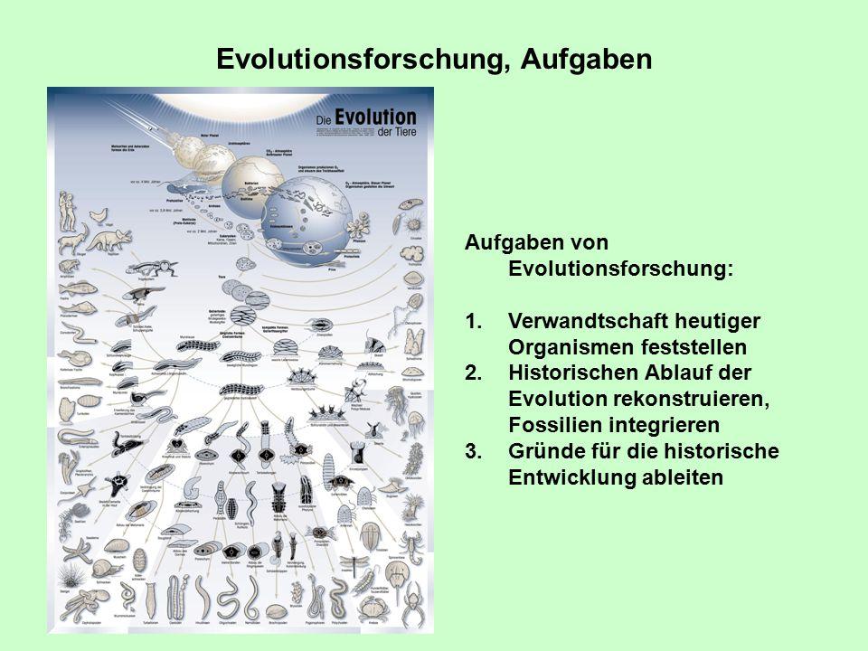 Evolutionsforschung, Aufgaben