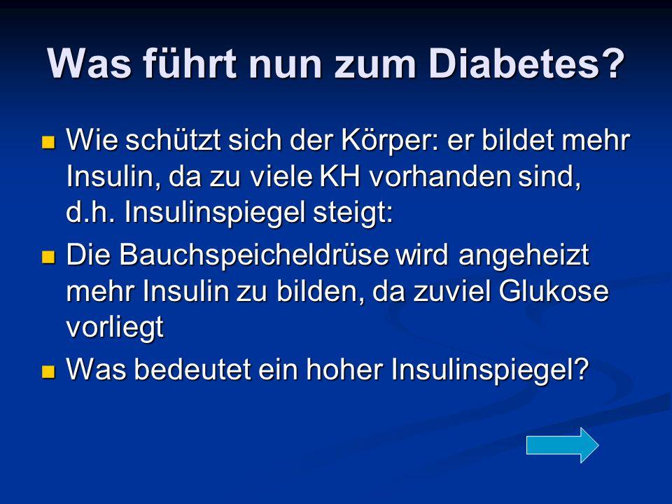 Was führt nun zum Diabetes