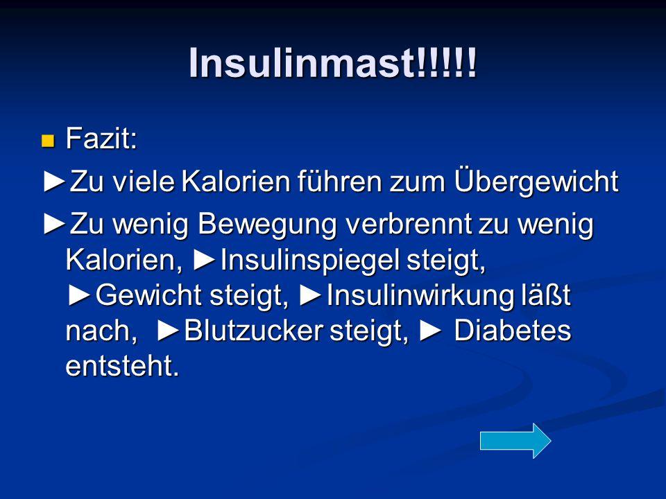 Insulinmast!!!!! Fazit: ►Zu viele Kalorien führen zum Übergewicht