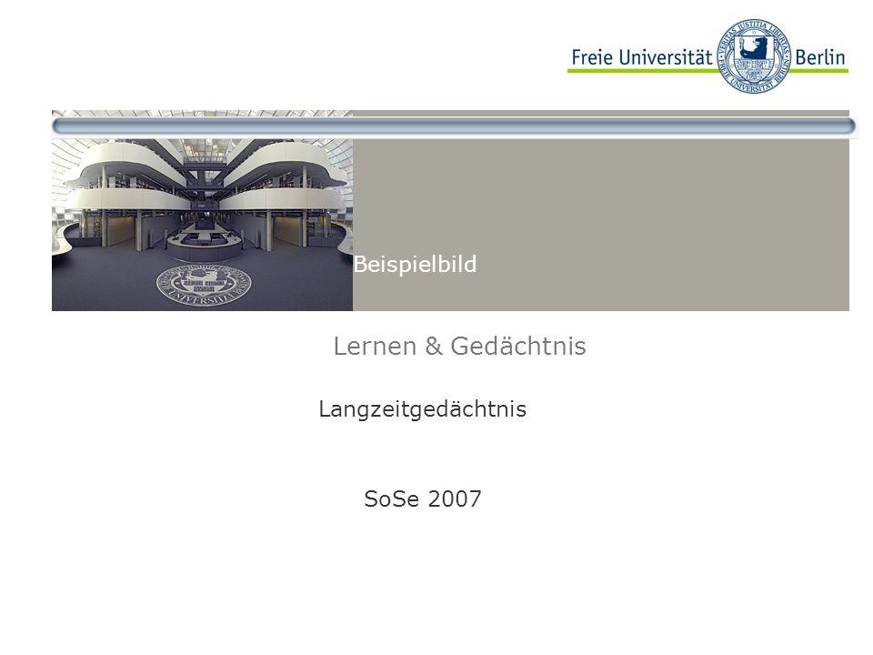 Langzeitgedächtnis SoSe 2007