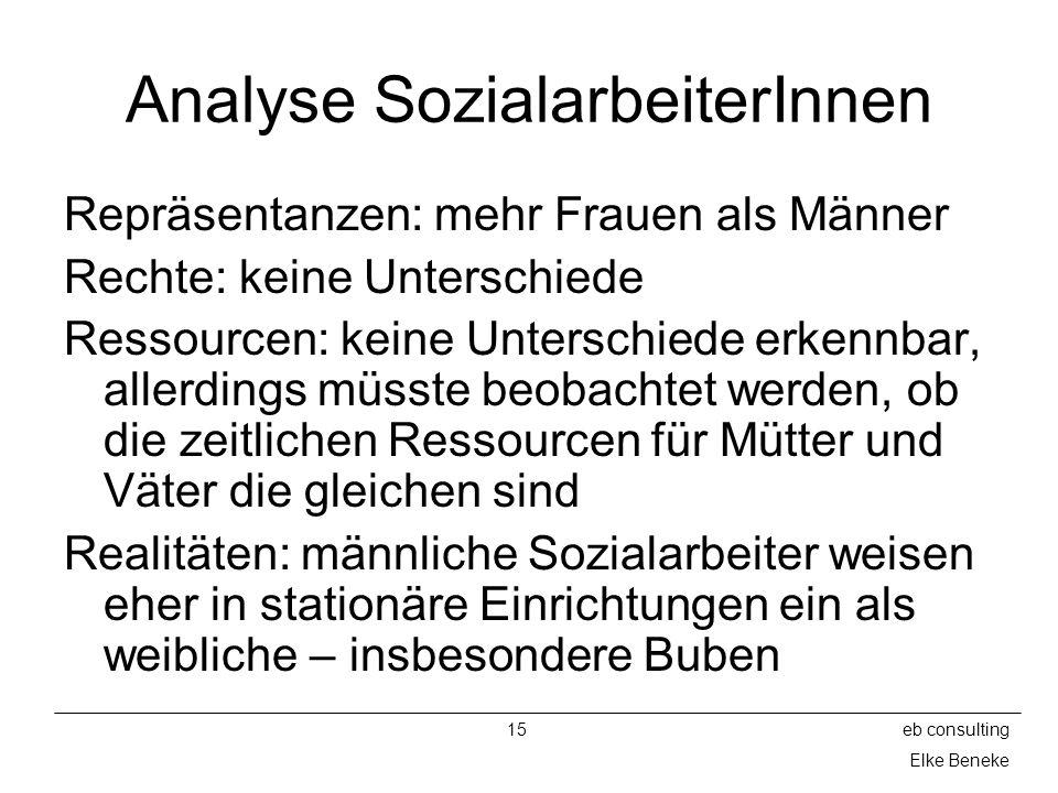 Analyse SozialarbeiterInnen