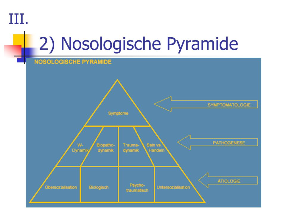 2) Nosologische Pyramide