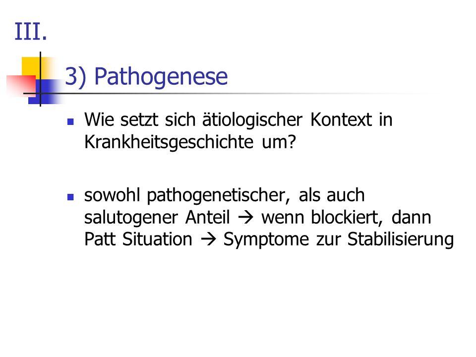 III. 3) Pathogenese. Wie setzt sich ätiologischer Kontext in Krankheitsgeschichte um