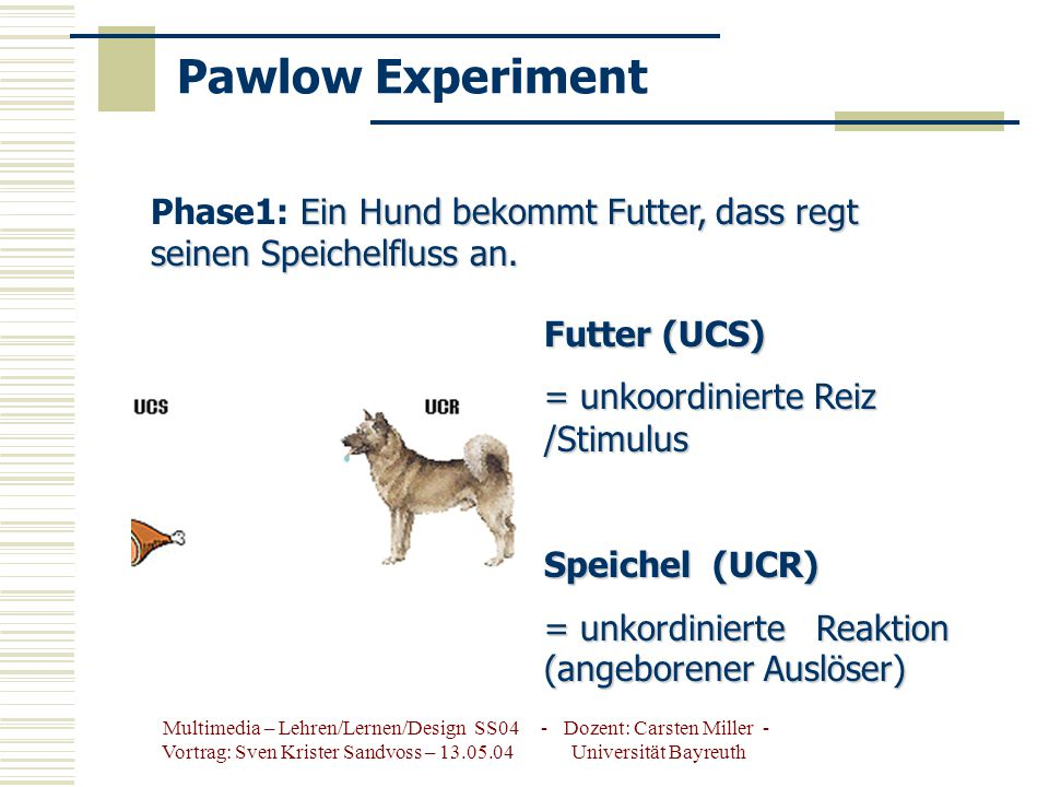 Pawlow Experiment Phase1: Ein Hund bekommt Futter, dass regt seinen Speichelfluss an. Futter (UCS)