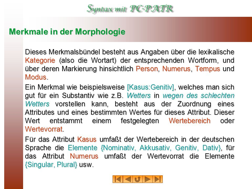 Merkmale in der Morphologie