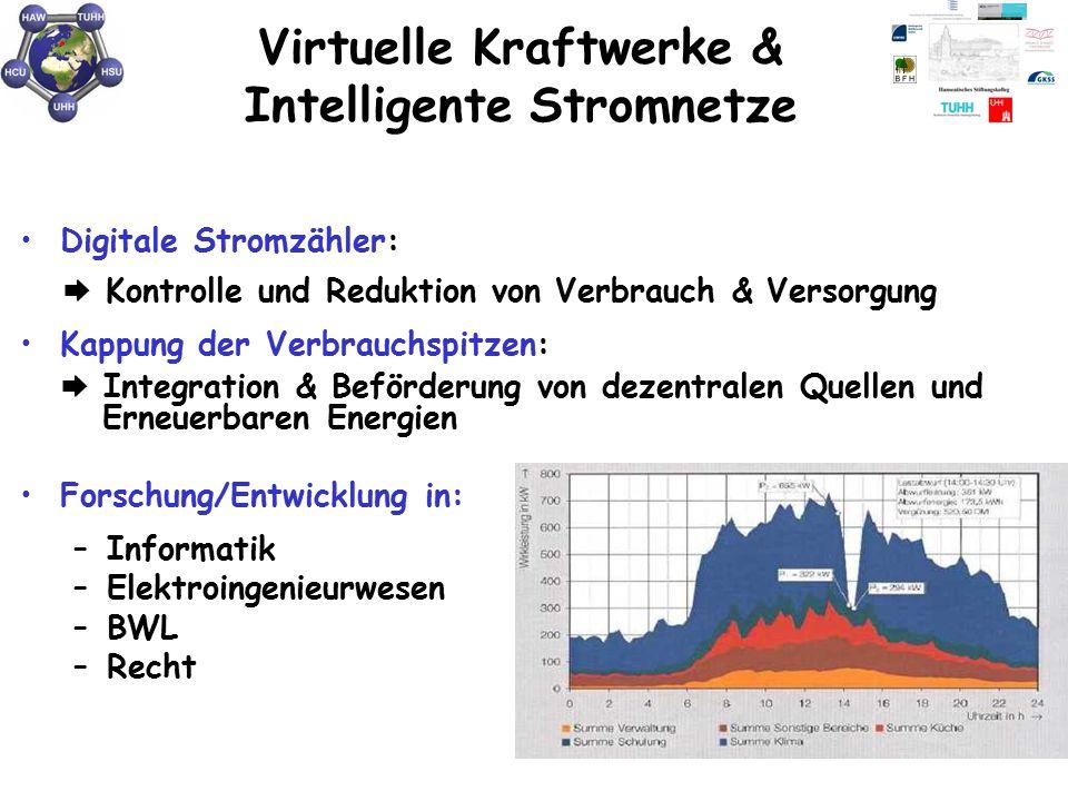 Virtuelle Kraftwerke & Intelligente Stromnetze