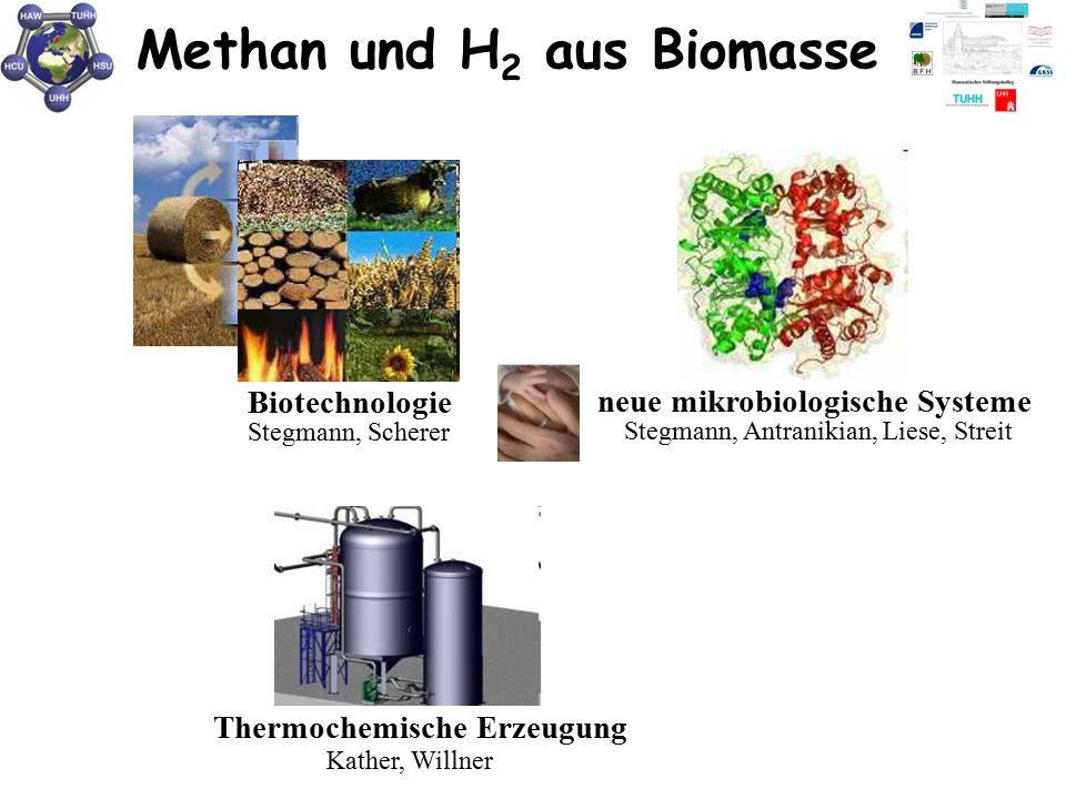 Methan und H2 aus Biomasse
