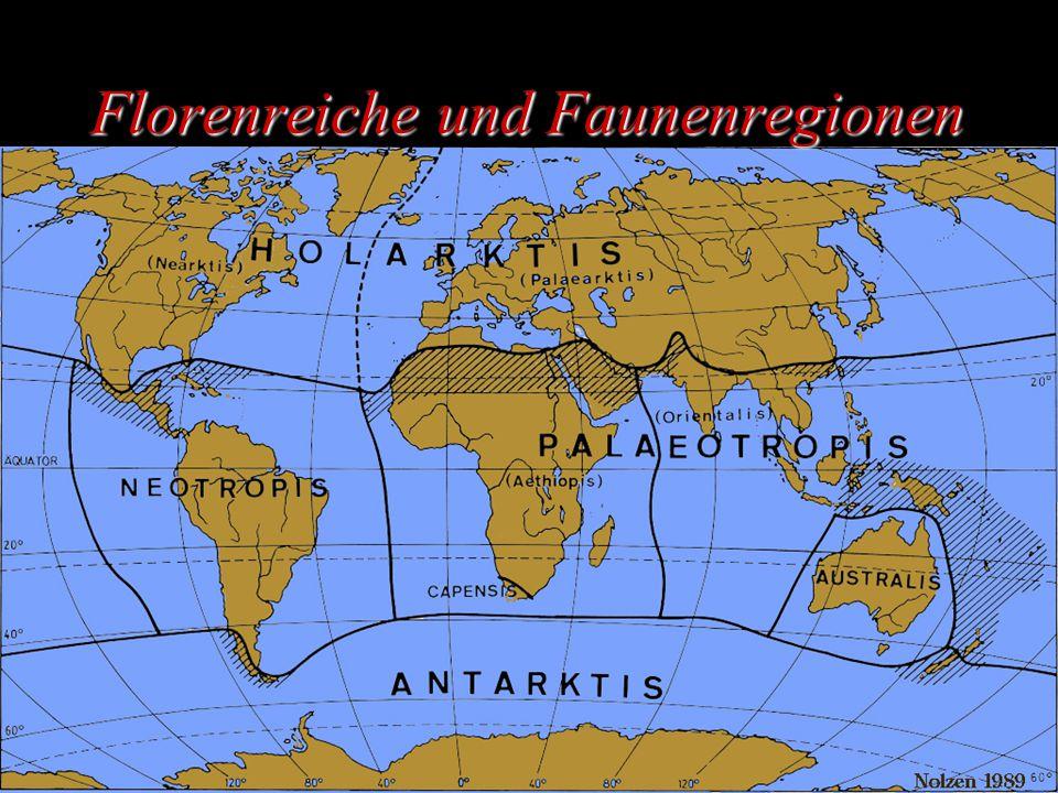 Florenreiche und Faunenregionen