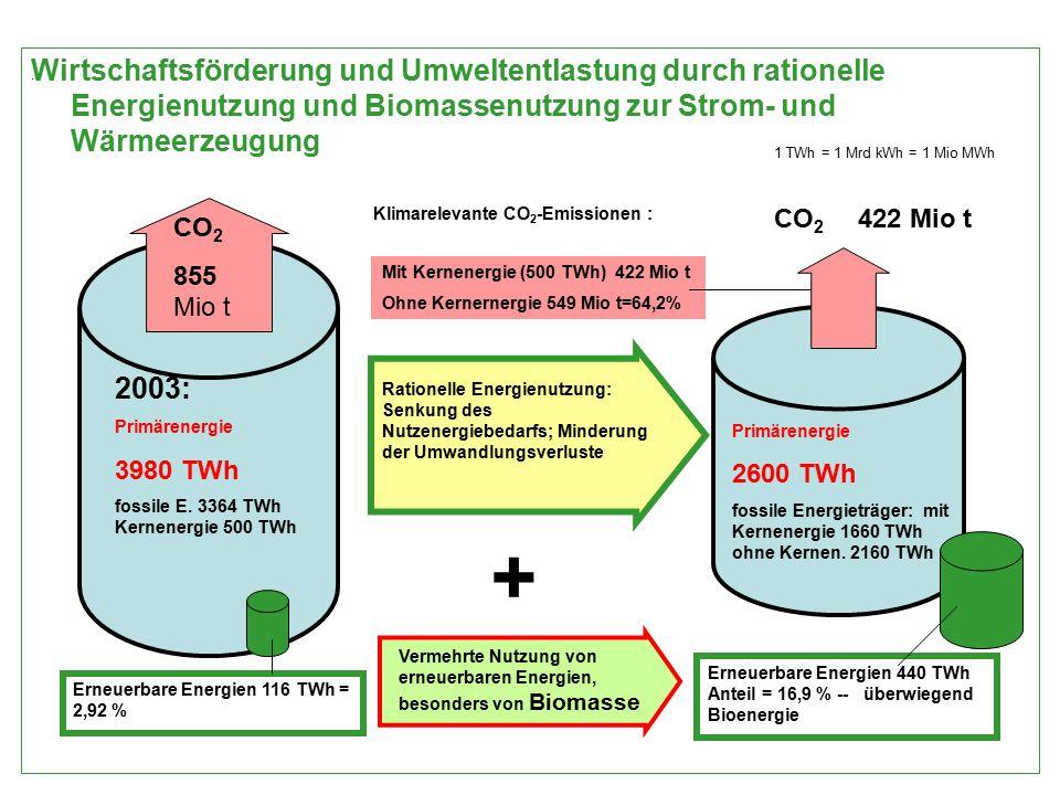 Wirtschaftsförderung und Umweltentlastung durch rationelle Energienutzung und Biomassenutzung zur Strom- und Wärmeerzeugung