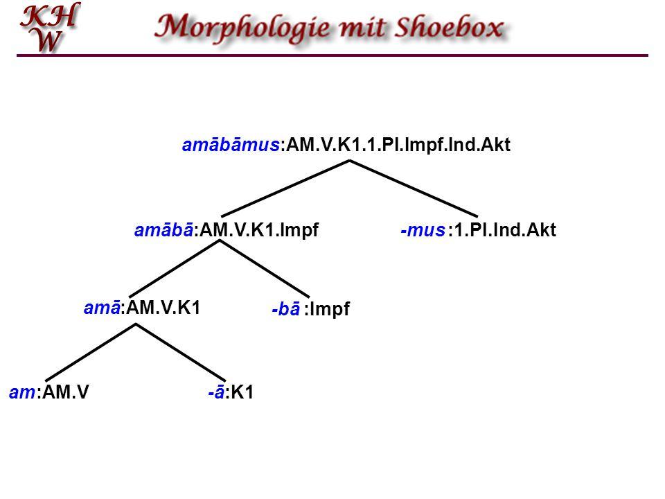 amābāmus :AM.V.K1.1.Pl.Impf.Ind.Akt. amābā. :AM.V.K1.Impf. -mus. :1.Pl.Ind.Akt. amā. :AM.V.K1.