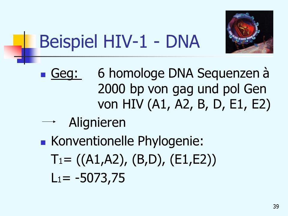 Beispiel HIV-1 - DNA Geg: 6 homologe DNA Sequenzen à 2000 bp von gag und pol Gen von HIV (A1, A2, B, D, E1, E2)