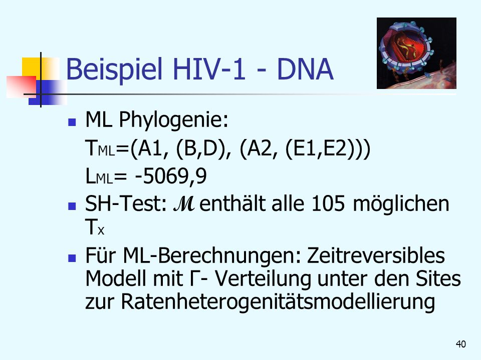 Beispiel HIV-1 - DNA ML Phylogenie: TML=(A1, (B,D), (A2, (E1,E2)))