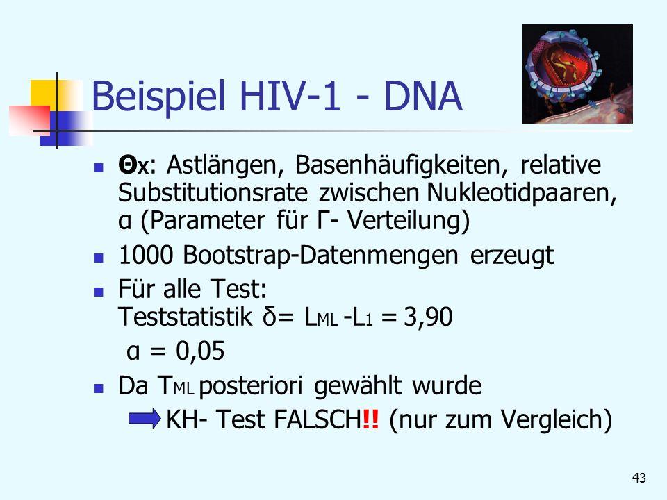 Beispiel HIV-1 - DNA ΘX: Astlängen, Basenhäufigkeiten, relative Substitutionsrate zwischen Nukleotidpaaren, α (Parameter für Γ- Verteilung)