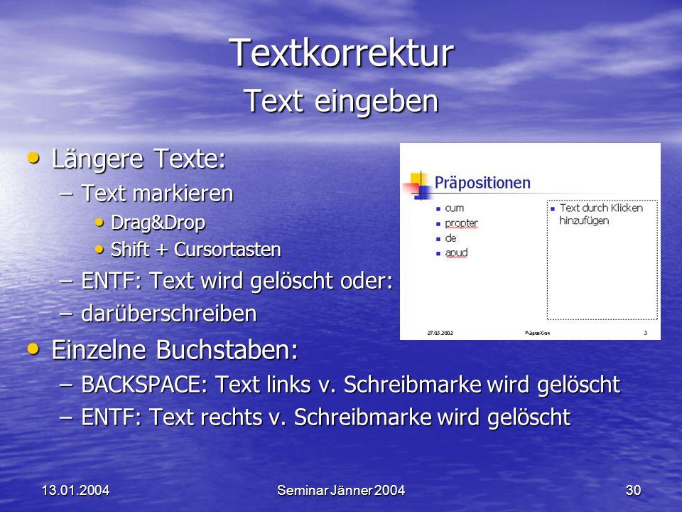 Textkorrektur Text eingeben