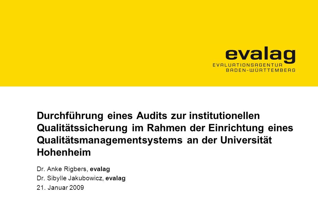 Durchführung eines Audits zur institutionellen Qualitätssicherung im Rahmen der Einrichtung eines Qualitätsmanagementsystems an der Universität Hohenheim