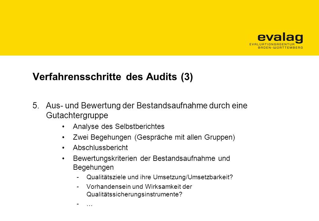 Verfahrensschritte des Audits (3)