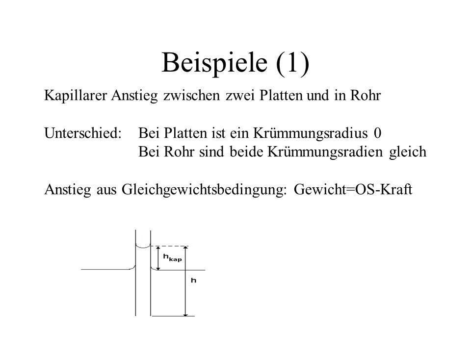 Beispiele (1) Kapillarer Anstieg zwischen zwei Platten und in Rohr