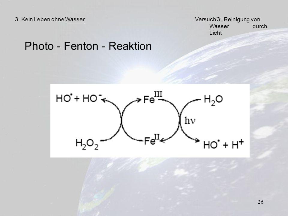 Photo - Fenton - Reaktion