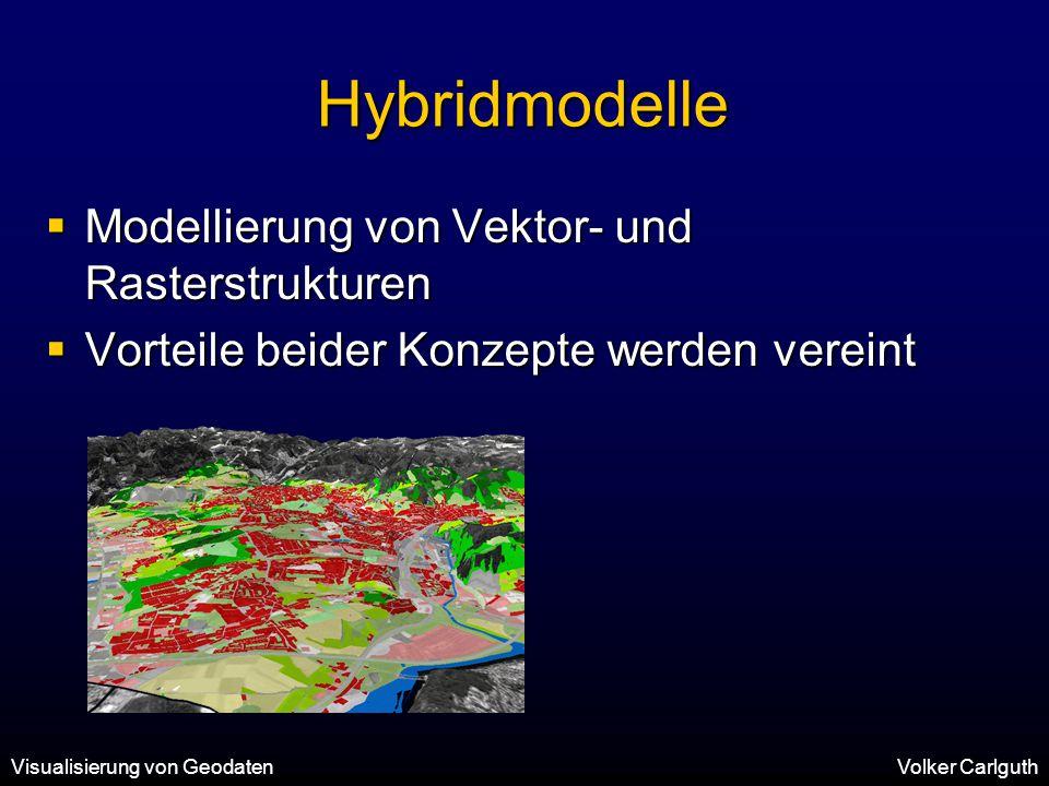 Hybridmodelle Modellierung von Vektor- und Rasterstrukturen