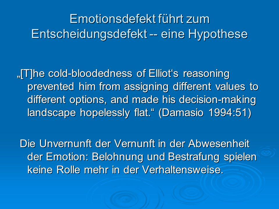 Emotionsdefekt führt zum Entscheidungsdefekt -- eine Hypothese