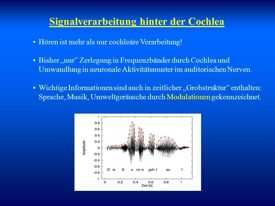 Signalverarbeitung hinter der Cochlea