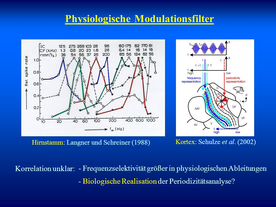 Physiologische Modulationsfilter