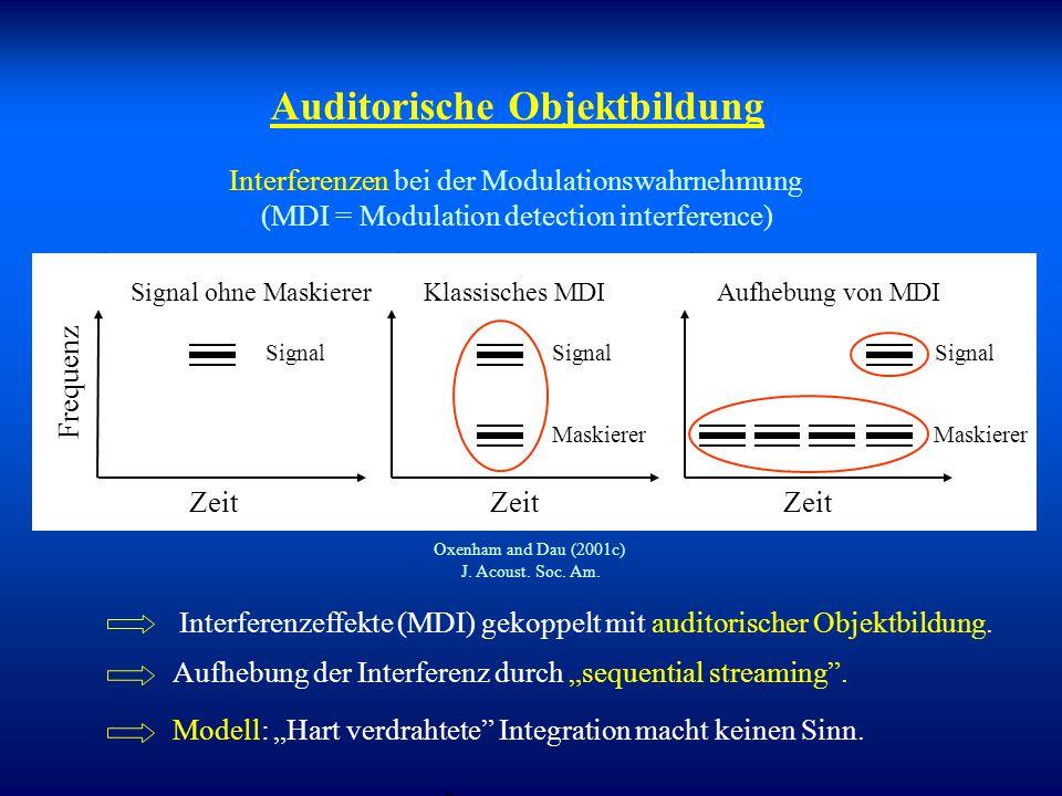 Auditorische Objektbildung