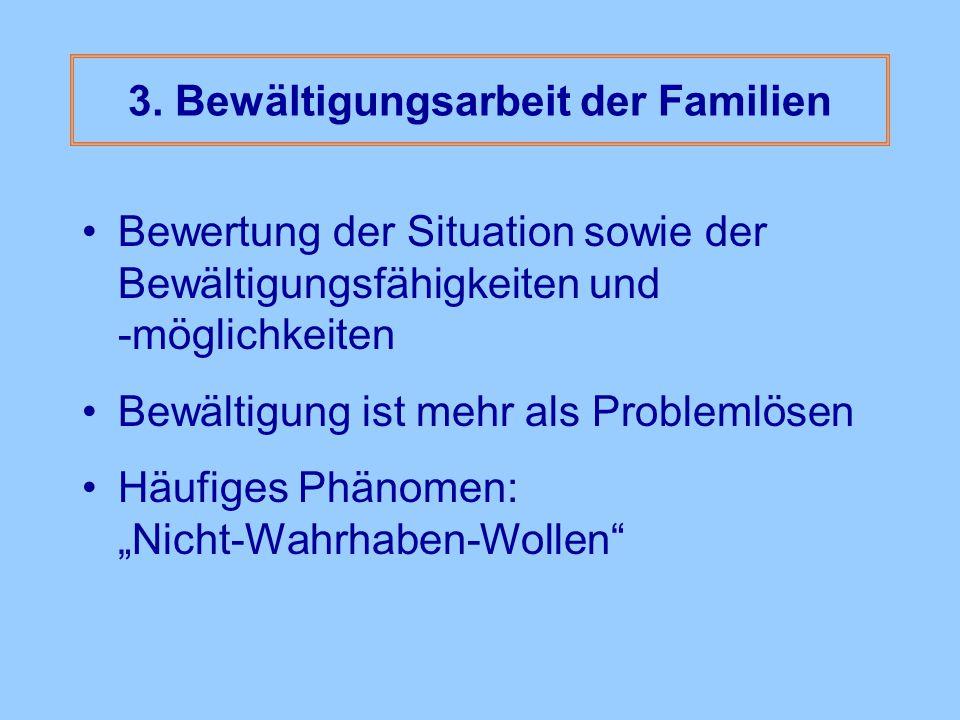 3. Bewältigungsarbeit der Familien